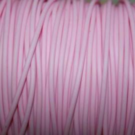 Caucho rosa 2mm hueco