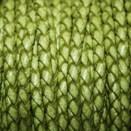 Trenzado 5mm verde oliva x cm