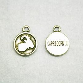 Zodiaco: Capricornio