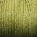 Antelina verde oliva