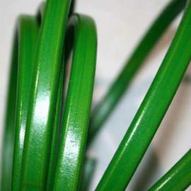 Cuero regaliz verde